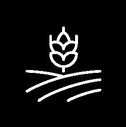 農業コンサルティングアイコン
